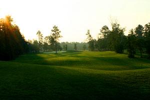 golf1-3