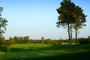 golf9-2