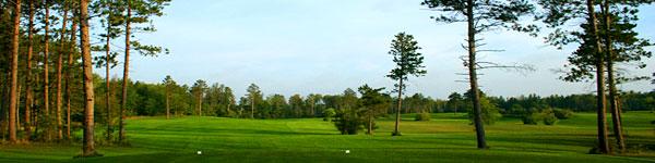 timberlane-resort-photo-gallery-8